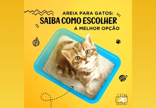 Areia para gatos: saiba como escolher a melhor opção