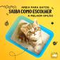 areia-para-gatos-2